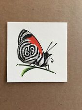 Mike Mitchell Anna's Eighty-Eight Butterfly Variant 69 3x3 NT Mondo Mint OOP