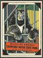 "VINTAGE ORIGINAL 1948 BEAR ""WILDLIFE EXHIBIT"" CRAWFORD NOTCH NH TRAVEL DECAL ART"