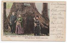 1904 Postcard of General Fremont & Wife at Big Tree Grove Santa Cruz CA