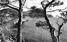BR38506 St CYR sur mer un coin de la madrague france