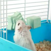 Hamster Teeth Grinding Stone Mineral Calcium Rabbit Squirrel Hot Rat Toys V4T0