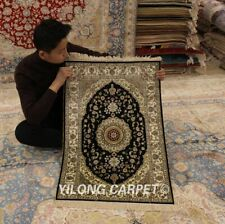Yilong 2'x3' Hand knotted Persian Area Silk Rugs Home Interior Carpet 151A