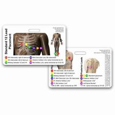 12-Lead EKG Placement Card - HORIZONTAL