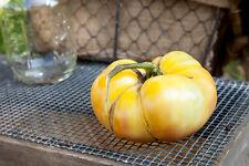 White Potato Leaf Heirloom Tomato Premium Seed Packet