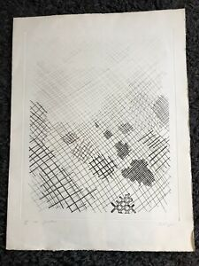 """WILLIAM TILLYER b1938 Large Limited Edition ETCHING """"Garden"""" 1974 70/90"""