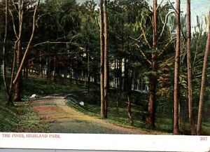 Manchester Connecticut Highland Park The Pines Vintage Postcard