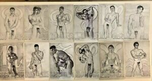 1969 - 12 JOE JOHNSON GAY ZODIAC SIGNS Prints NUDE MALES, MISS THING, CARTOON
