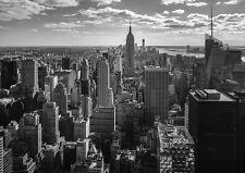 NEW YORK CITY PROFILO EMPIRE STATE BUILDING Foto Carta Da Parati Murale
