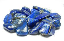 TUMBLED - (4) LG/XL LAPIS LAZULI Crystal w/Description Card- Healing Stone Reiki