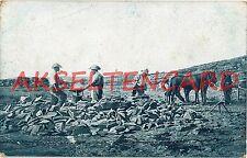 Beruf Ansichtskarten vor 1914