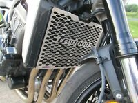 06-10 COVER H012PCB Protection Beowulf Radiateur Protection HONDA CBF1000 Grill