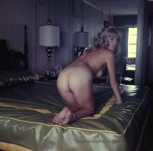 Bunny Yeager Estate 1973 Color Transparency Photograph Nude At Jockey Club Fab!