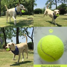 Pet Dog Puppy Toy Indestructible Solid Rubber Ball Training Chew Play Fetch Bite