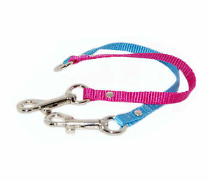 cerise pink  & blue  2 way chihuahua dog/puppy coupler lead webbing