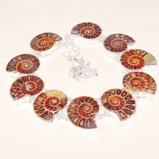 Amazing Ammonite Fossil Silver Necklace 143 Gms