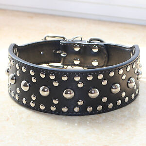 NEW Unisex Leather Spiked Studded Large Breed Pet Dog Collar Pitbull Terrier M L