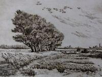 """Karl-Heinz Böhme (XX) - Radierung: """" Teich-Landschaft / Bäume im Sturm """""""