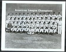 1946 Boston Red Sox American League Champions 8x10 Team Photo {Ted Williams}