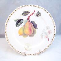 """Churchill (Queen's Rosina) HOOKER'S FRUIT """"Pears"""" Dinner Plate(s)"""