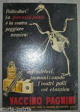 NAPOLI_BELLAVISTA_PAGNINI_VETERINARIA_VECCHIO CARTELLO PUBBLICITARIO_D'EPOCA