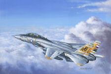 F-14A Hobby Boss 1/48