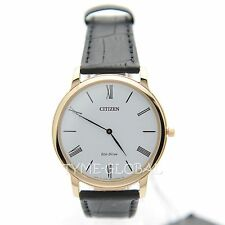 Citizen AR1113-12B Men Water Resistant Gold Toned Black Leather Strap Watch