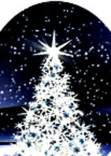 20 water slide Diy Manicure Christmas White tree blue background full nail