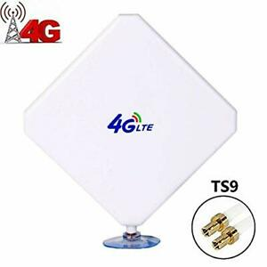 Aigital Antenne 4G LTE 35dbi TS9 Connecteur Dual Mimo Booster 3G/4G/GSM Amplific