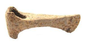 Ancient Rare Authentic Viking Kievan Rus Byzantine Iron Battle Axe 8-10th AD
