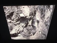 "Constance Larrabee ""fallen German Soldier (WWII) 1944"" Photography 35mm Slide"