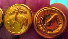 1 GOLDEN FLEECE Brooks Brothers HIGH END DESIGNER BLAZER JACKET Sleeve Button