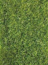 Heki 3369 Grass Fiber Dark Green Wild Grass, 75 G for All Track Gauges Brand New