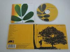 JACK JOHNSON/IN BETWEEN DREAMS(BRUSHFIRE 0602498800331) CD ALBUM