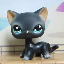 Littlest Pet Shop Animals Collection LPS Toys Black Short Hair Siamese Cat #994