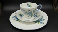 Royal Albert Forget Me Not Trio Cup & Saucer with Salad Dessert Plate England