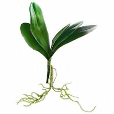 33cm Artificial Orchid Leaves with Roots - Green Leaf Orchid Plastic Plant