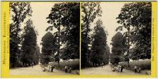Stéréo Bedford circa 1870. Torquay - The avenue at tor. Devon. England.