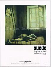 Suede Dog Man Star Poster
