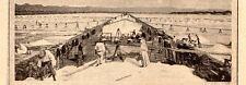 RECOLTE DU SEL MARIN MISE EN CAMELLE IMAGE 1908 PRINT