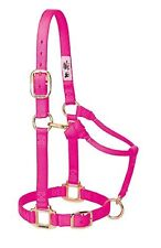 "Weaver Leather Original 1"" Horse Adjustable Throat Snap Nylon Diva Pink Halter"