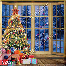 Christmas 10'x10' Computer-painted Scenic Photo Background Backdrop SZ027B11