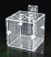 Acrylic Breeders box Hatchery Separation container