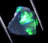 2 Carat Australian Lightning Ridge Rough Black Opal Specimen SEE VIDEO