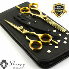 Professional Barber Hairdressing Scissors 5.5 Gold Set With Razor