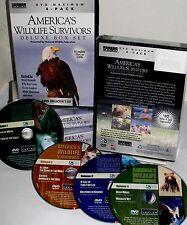 America's Wildlife Survivors 4 DVD Box Educational Wolf Bears Dolphins Eagles