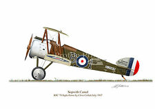Sopwith Camel 1917 Aircraft Profile Artwork A5 Collett Glossy Print WW1 signed