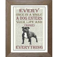 Staffordshire Bull Terrier Dog Art Print on Original Vintage Antique Book Page.
