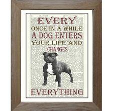 Staffordshire Bull Terrier Dog Art Print on Original Vintage Antique Book Page.