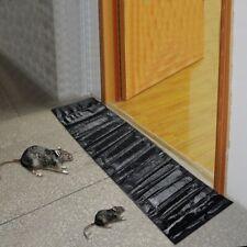 Come fare una trappola per molti topi - Casa