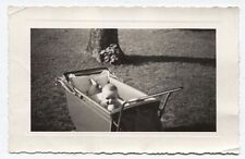 VINTAGE PHOTO BABY IN BABY BUGGY PARK SETTING.